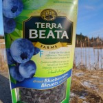 NEW Dried Blueberries 100g